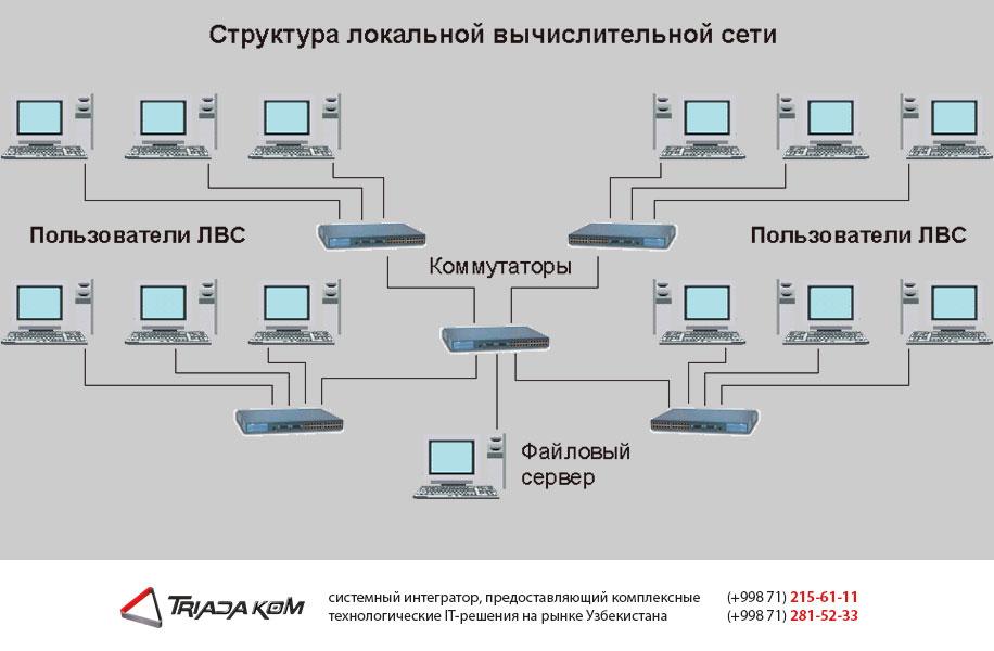 Наши услуги по проектированию ЛВС в Ташкенте