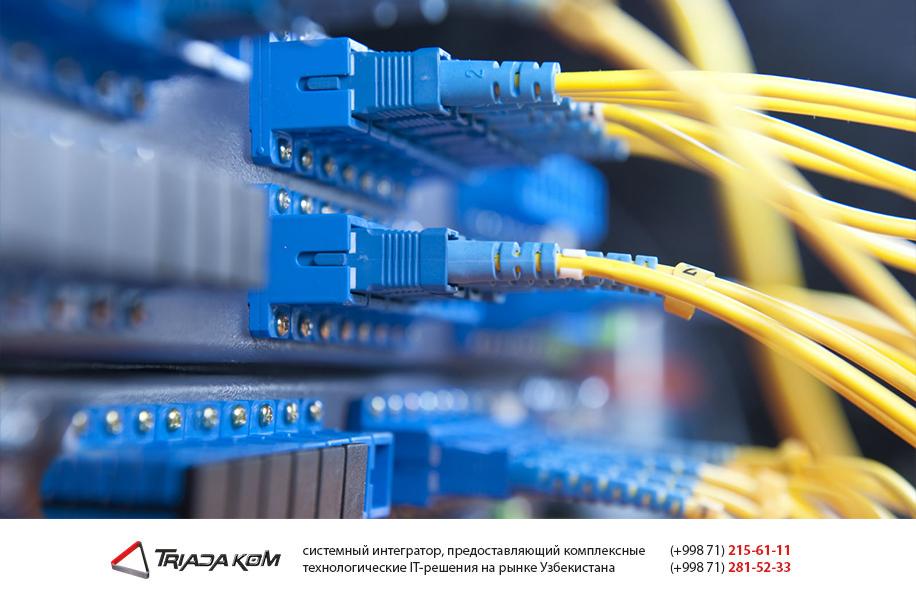 Монтаж локальных сетей в Ташкенте